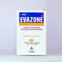 Evazone 250 Im